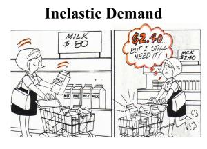 Inelastic-Demand